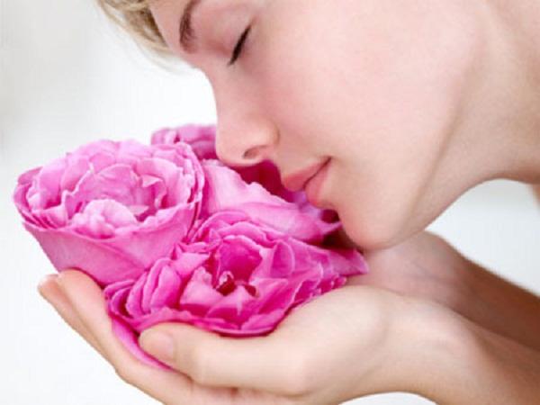Hướng dẫn cách chọn nước hoa hồng