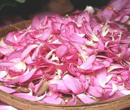 lam dep tu hoa sen