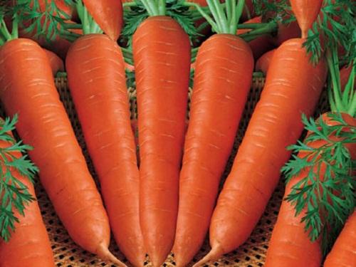 9 tác dụng của cà rốt trong làm đẹp da và tóc - hình cà rốt