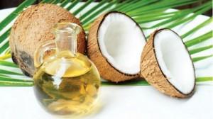 hình dầu dừa