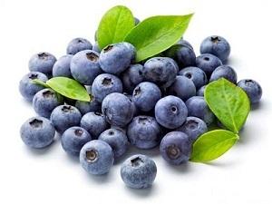 Image result for trái việt quất blueberry có tác dụng dưỡng da
