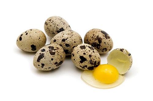 trứng cút