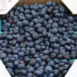 Nên ăn gì, kiêng ăn gì để trị nám tàn nhang hiệu quả? - việt quất mâm xôi 150x150