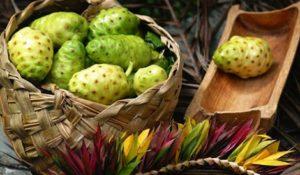 Bí quyết làm đẹp và giảm cân từ trái nhàu