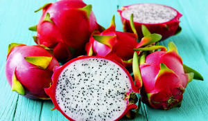 dragon-fruit--1