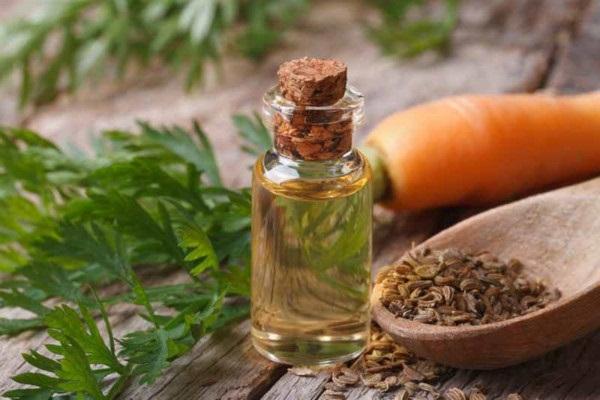 Cách làm serum dưỡng da tại nhà giúp làm trắng da và chống lão hóa - Tinh dầu cà rốt carrot seed oil