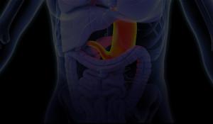 Dấu hiệu và triệu chứng trào ngược dạ dày - da 2 banner top 300x175