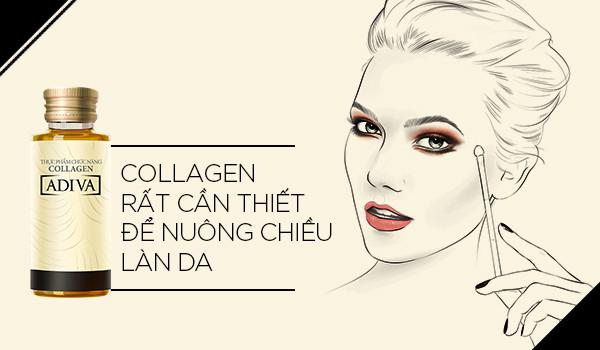 Collagen Adiva