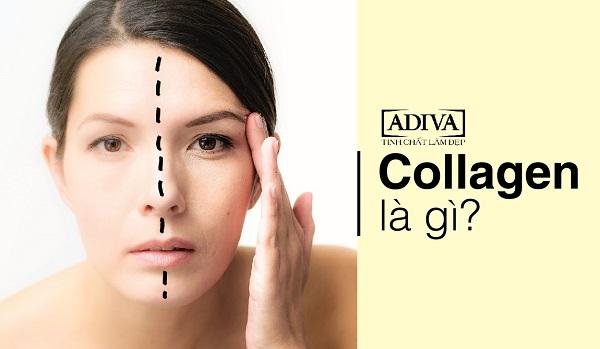 8 sự thật cần biết trước khi sử dụng collagen 2