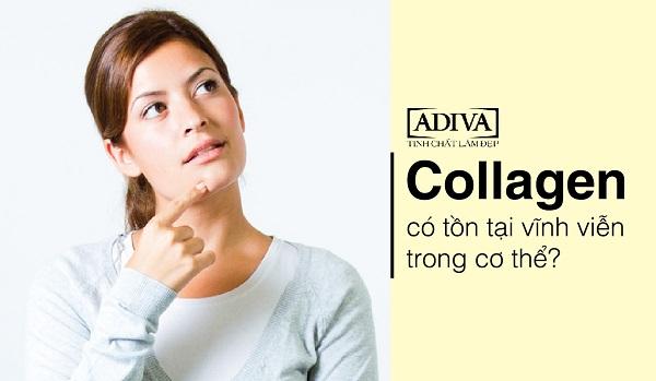 8 sự thật cần biết trước khi sử dụng collagen 3