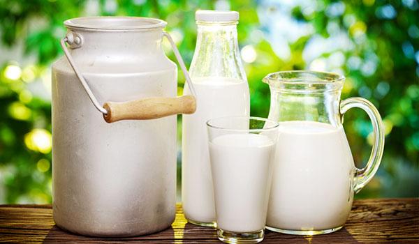 Bệnh đầy hơi và cách điều trị bệnh - milk final 11