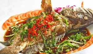 Có nên ăn cá khi bị viêm loét dạ dày tá tràng? - ca mu sot chua ngot 300x175