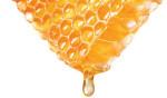 Đau dạ dày uống mật ong có tốt hay không? - dau da day uong mat ong 7 150x88