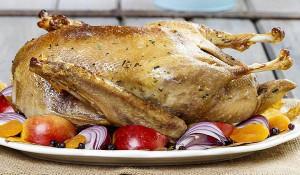 Cách dùng thịt vịt trị đau dạ dày - thit vit 300x175