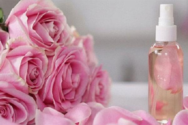 hoa hồng tinh dầu làm đẹp da tại nhà