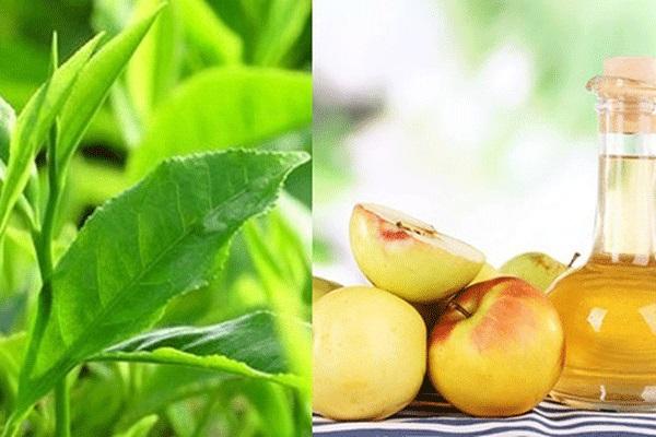 cách trị nám hiệu quả với trà xanh và giấm táo