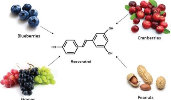 resveratrol la gi
