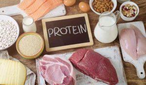 protein la gi 4