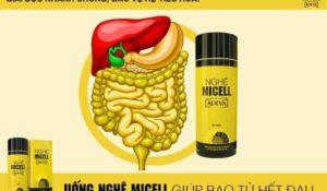 Công nghệ Nano – Micelles hứa hẹn đẩy lùi đau dạ dày nhanh chóng - cong nghe nano micell 2 300x175