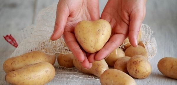 Đắp mặt nạ khoai tây hằng ngày có tốt không? - dap mat na khoai tay hang ngay co tot khong 5
