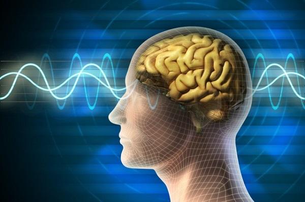 Cải thiện sức khỏe não