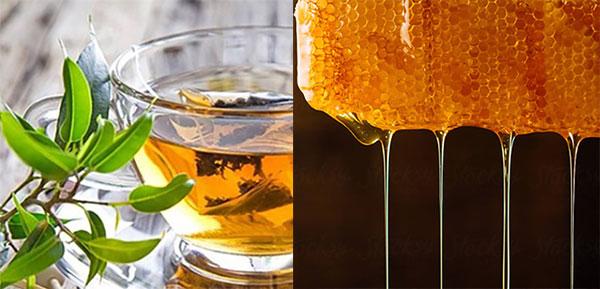 17 biện pháp khắc phục bệnh loét dạ dày tại nhà - tra xanh mat ong