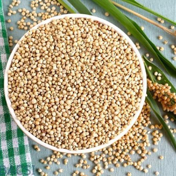 10 lợi ích sức khỏe tuyệt vời của cao lương (lúa miến) - cao luong 1