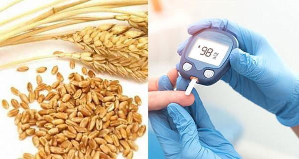 28 lợi ích tuyệt vời của lúa mì nguyên cám đối với da, tóc và sức khỏe - lua mi tieu duong